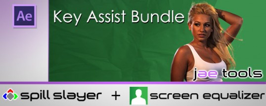 Key Assist Bundle