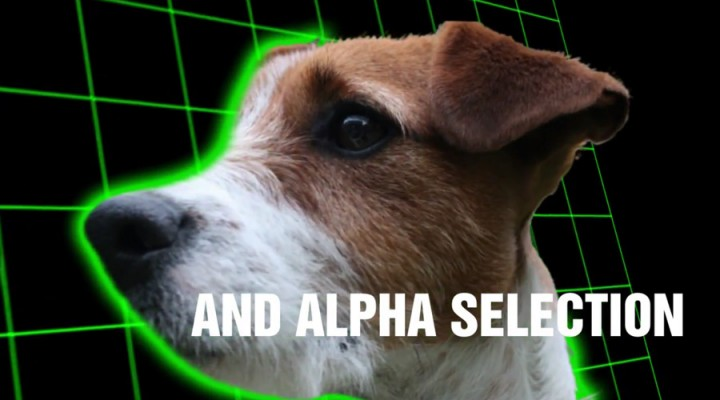 Use height maps for alpha selection
