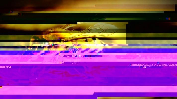 data glitch 2 aescripts aeplugins aescriptscom