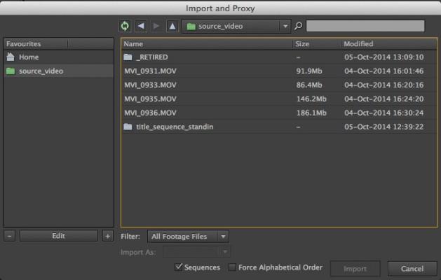 Custom File Import Dialog