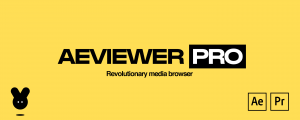 AEVIEWER 2 Pro