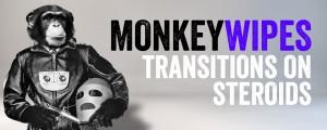 MonkeyWipes