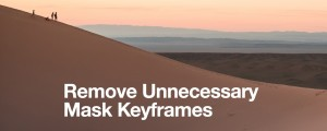 Remove Unnecessary Mask Keyframes