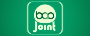 BAO Joint