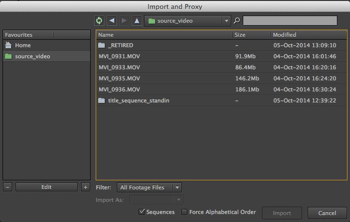 File Import Dialog